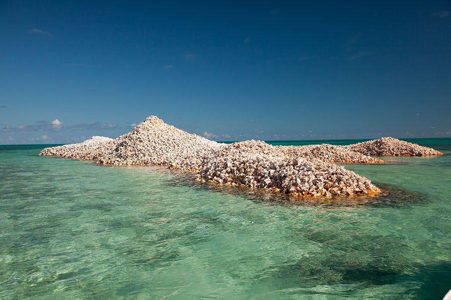 Conch-Mounds-Anegada